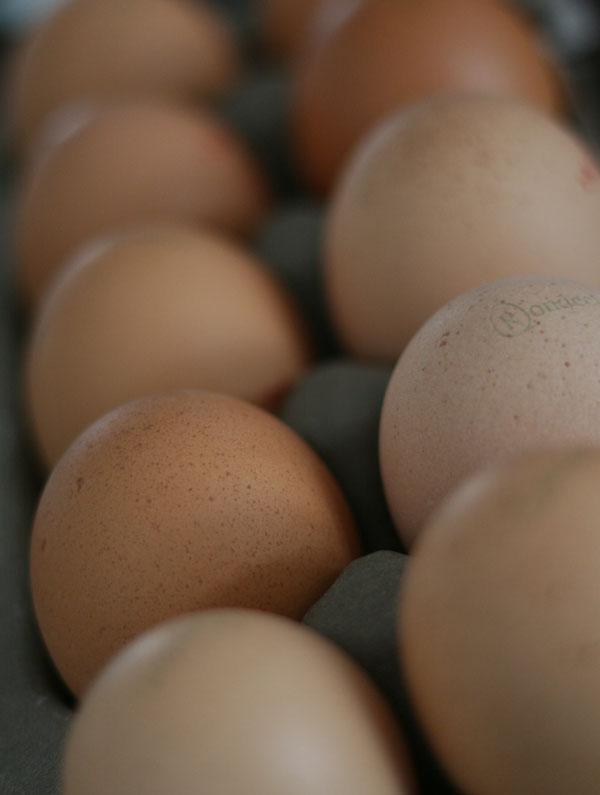 Gekookt paasei? Koop je eieren dan dit weekend! (en andere paaseitips)