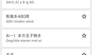 Lost in Google Translate
